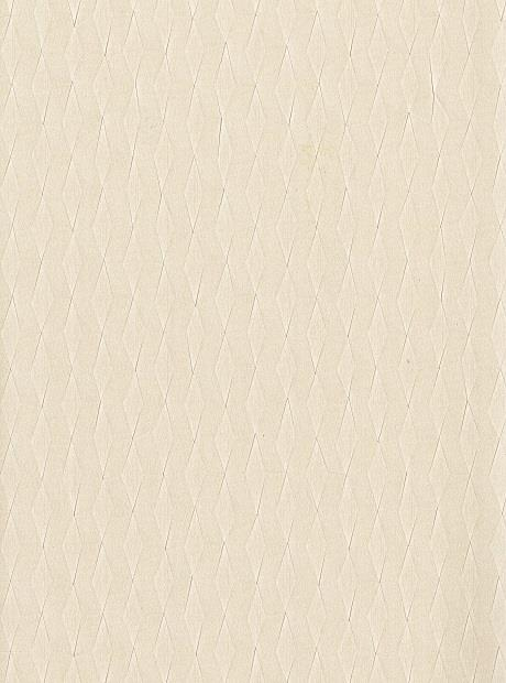 Dixon Turner Illusion Wallcovering 2988-IS