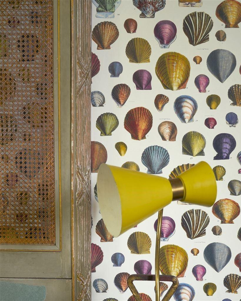 Designers Guild Captain Thomas Browns Shells Wallpapers