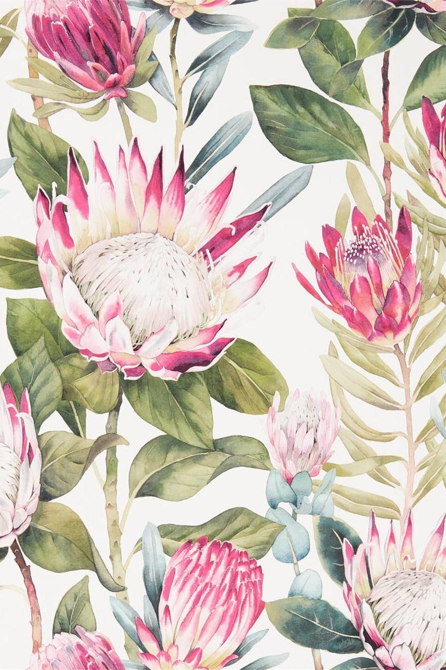 Sanderson Glasshouse King Protea Wallpaper DGLW216646
