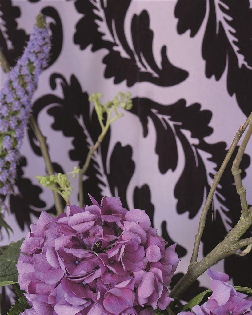 Designers Guild Ardassa Wallpapers